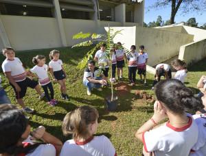 Garotada recebeu orientações sobre o plantio e importância das árvores